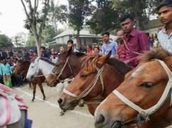 নাগরপুরে ৮৩তম ঐতিহাসিক ঘোড়দৌড় অনুষ্ঠিত