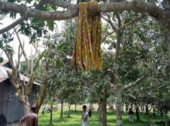 ঘুড়ি উড়ানো নিয়ে রাগারাগি, শ্রীপুরে শিশুর আত্মহত্যা