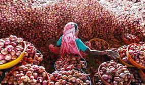 ১০০ ছাড়ালো পেঁয়াজের কেজি, একদিনেই বাড়লো ৪০ টাকা