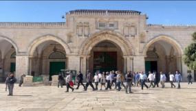 আল-আকসা মসজিদে ইসরায়েলি দখলদারদের তাণ্ডব