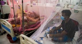 ডেঙ্গু আক্রান্ত আরও ২৫৪ জন হাসপাতালে ভর্তি