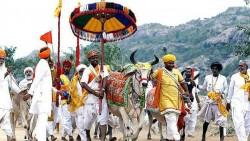 ভারতে গো-রক্ষকদের বিরুদ্ধে কঠোর ব্যবস্থার নির্দেশ