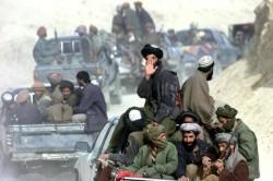 আফগানিস্তানে নিরাপত্তা বাহিনীর অভিযানে ৪৩ তালেবান নিহত