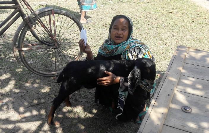 ''পশু রোগী'' খোকসার প্রাণি সম্পদ হাসপাতাল