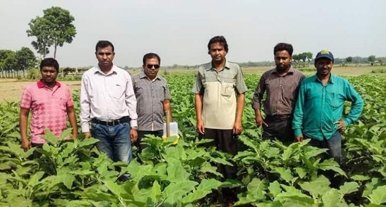 খোকসা বিহারিয়ায় কৃষক স্কুলে পুষ্টি ক্লাস