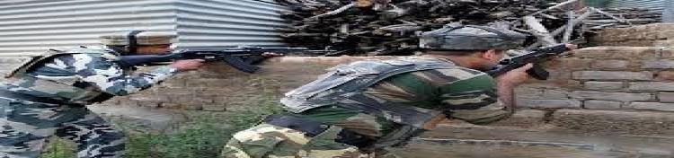 জম্মু-কাশ্মিরে নিরাপত্তা বাহিনীর অভিযানে নিহত ৩