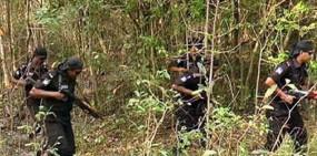 হবিগঞ্জের সাতছড়িতে অস্ত্রের খোঁজে র্যাবের অভিযান