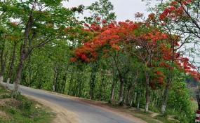 বান্দরবানে নতুন পর্যটন স্পট 'অস্তাচল' উদ্বোধন