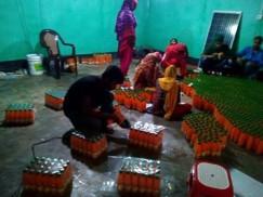 ঠাকুরগাঁওয়ে ভেজাল জুস কারখানার সন্ধান