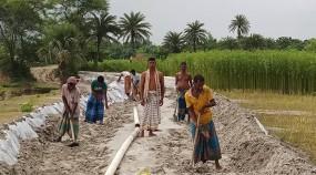 মহম্মদপুরে নিজ উদ্যোগে রাস্তা নির্মান করলো যুবকরা
