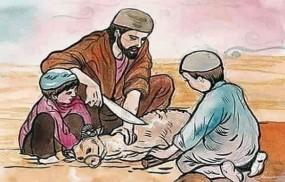 মৃত ব্যক্তির নামে কোরবানি, ইসলাম কি বলে ?