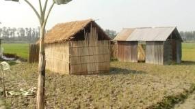 ফুলবাড়ীতে ধান ক্ষেতে জোরপূর্বক ঘর উত্তোলন