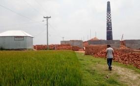নাগরপুরে ইট খোলার আগুনে পুড়ে গেছে বোরো ধান, সাংবাদিককে হুমকি