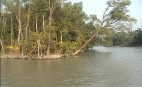 সুন্দরবনে 'বন্দুকযুদ্ধে' চার জলদস্যু নিহত