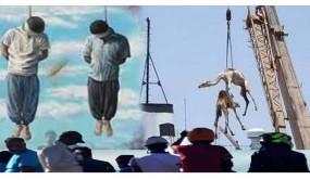সৌদি আরবের কিছু তথ্য আপনাকে অবাক করবে