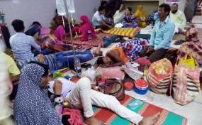 ডেঙ্গুজ্বরের প্রভাব: 'সরকারি হাসপাতাল বনাম বেসরকারি হাসপাতাল'