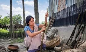 'মিস ওয়ার্ল্ড বাংলাদেশ' কেন গোবর কাঠি তৈরিতে ব্যস্ত?