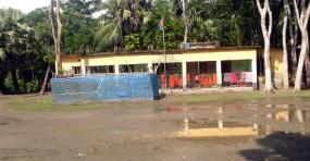 মোরেলগঞ্জে স্কুলের গাছ কেটে নিল প্রভাবশালীরা, জমি দখল