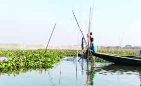 গায়বান্ধায় মাছ ধরতে গিয়ে প্রাণ হারালেন চাচা-ভাতিজা
