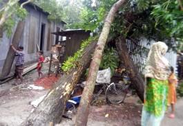 'বুলবুলের' আঘাতে লন্ডভন্ড মোড়েলগঞ্জ, ১০ হাজার কাঁচা বাড়ি বিধস্ত