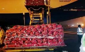 পাকিস্তান থেকে বিমানে এলো ৮২ টন পেঁয়াজ (ভিডিও)