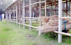 নড়াইলের চর ব্রাহ্মণডাঙ্গা মাদরাসার ক্লাসরুম গরু-ছাগলের চারণভূমি