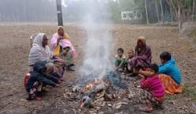প্রচন্ড শীতে কাঁপছে নবাবগঞ্জের মানুষ