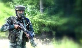 নতুন বছরের শুরুতেই কাশ্মীরে দুই ভারতীয় সেনা নিহত