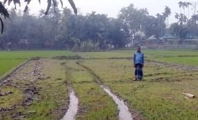 কেন্দুয়ায় কায়দার গেরাকলে বোরো জমিতে সেচ ব্যাহত