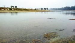 নদীতে গোসল করতে নেমে ৩ বন্ধুর মৃত্যু